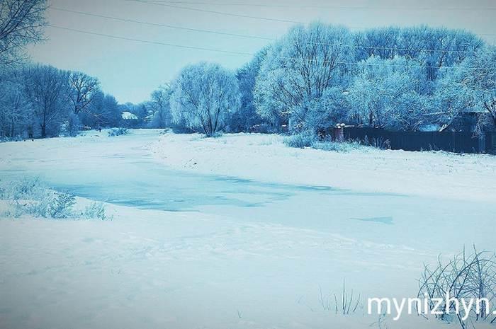 Ніжин, ніжинська зима, зимова краса, сніжний Ніжин, іній