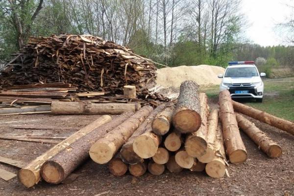 крадіжка, колоди деревини, розслідування