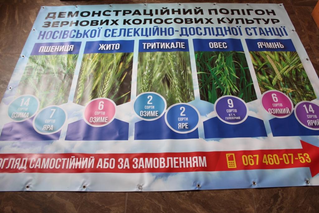 дослідницька станція, Курути, Маяк, овочі