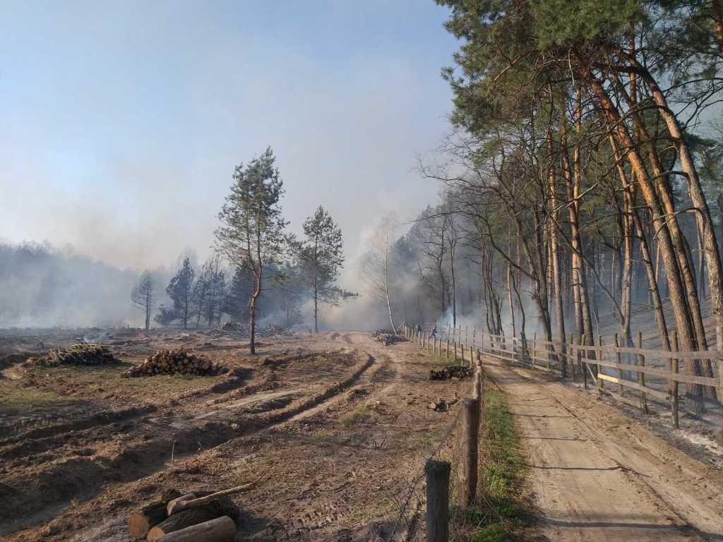 рятувальники, спеціальний авіаційний загін, пожежа