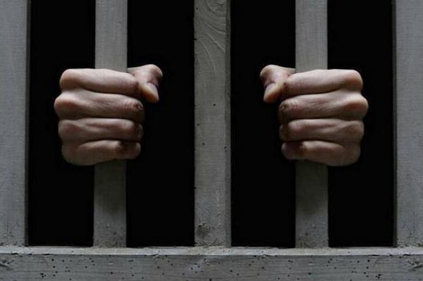 Суд, вирок, злочин, крадіжк