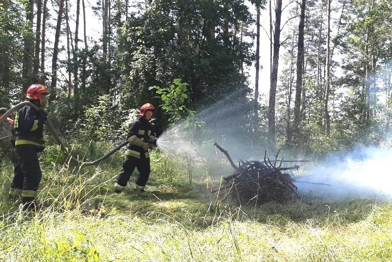 тренування, лісівники, рятувальники, пожежі