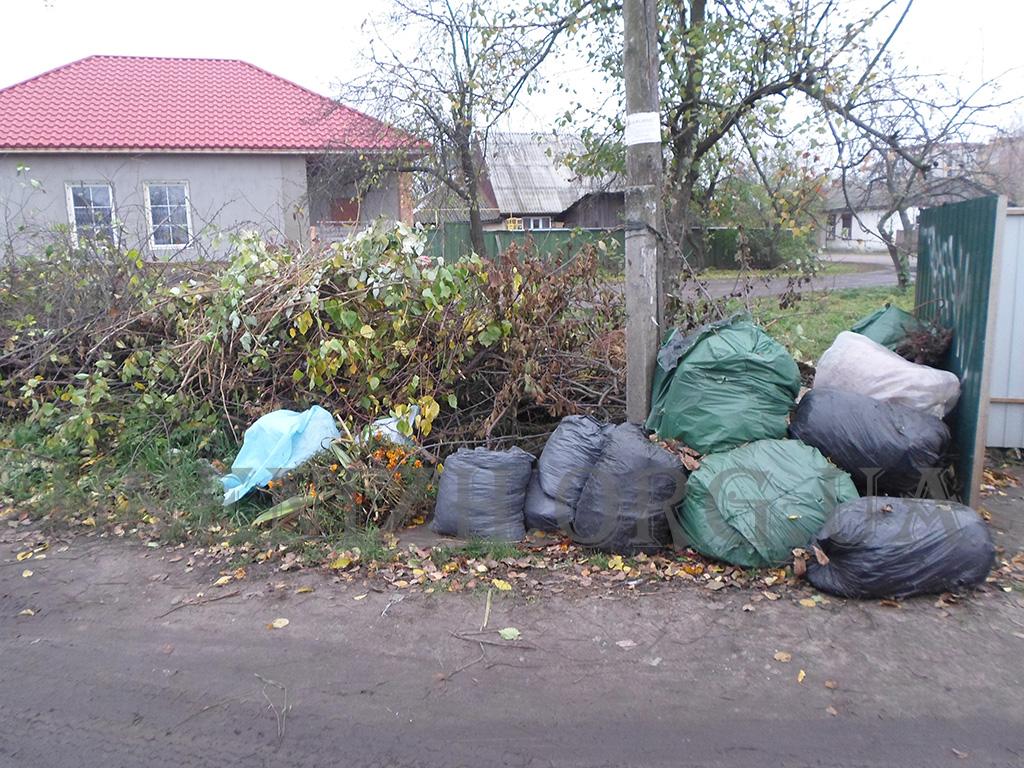 сміття, благоустрій, інспекція, рейди