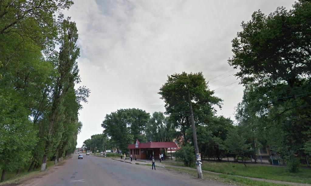 висадка, дерева, вулиця Шевченка, Незалежності