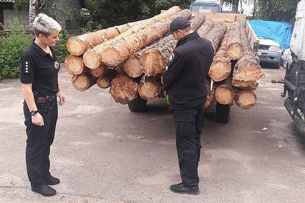 Трактор, деревина, поліція, затримання