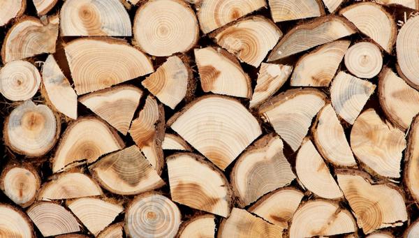 Лісопродукція, дрова, подорожчання