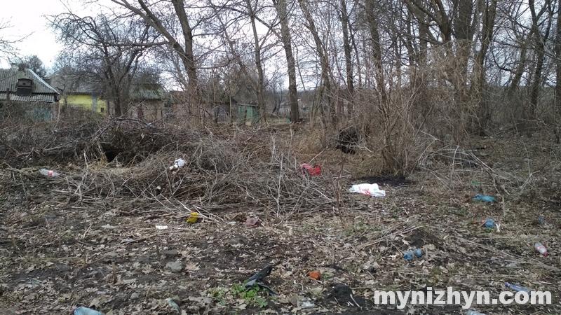 сміття, паління сухої трави