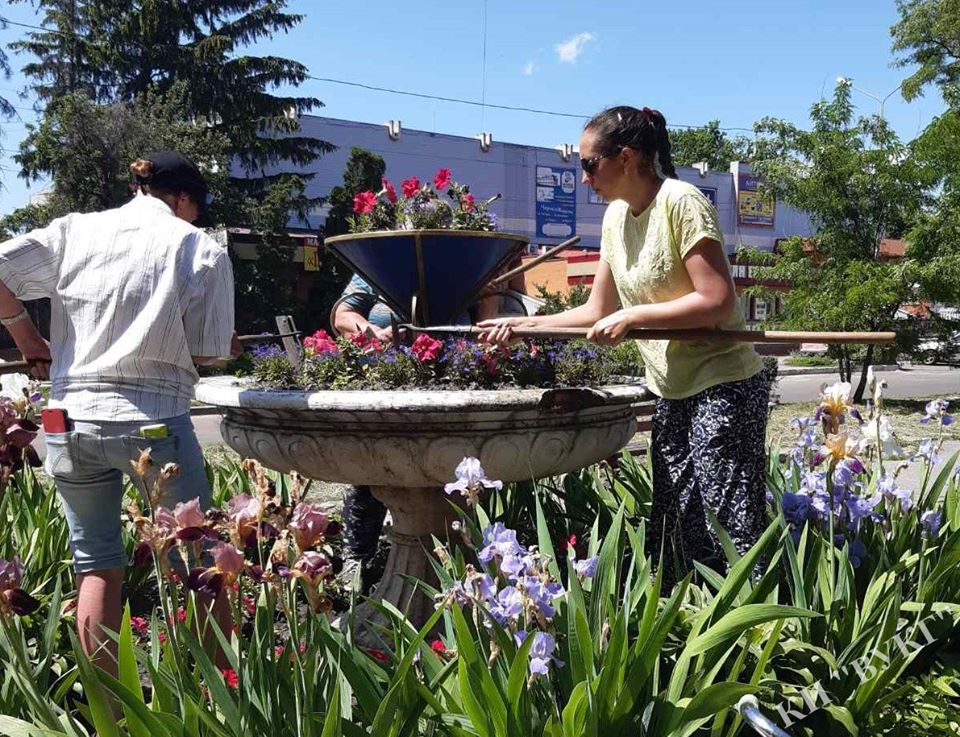 квіти, спека, комунальники