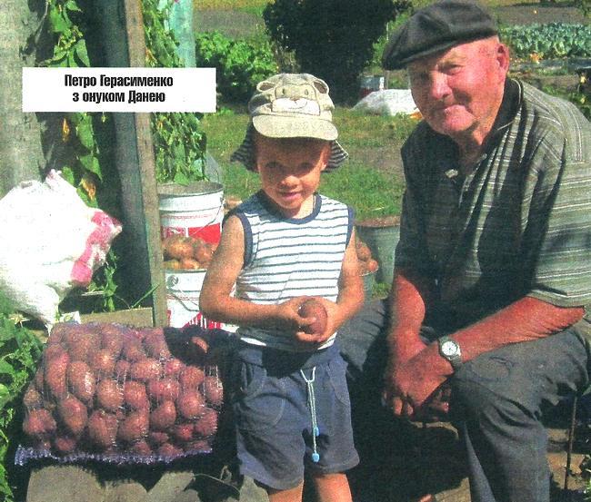 картопля, продаж, селяни