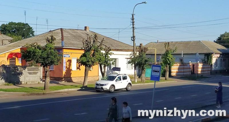 каштани, обрізка дерев, Гоголівська