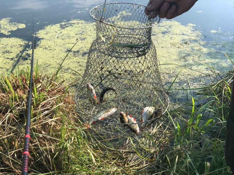 турнір, риболовля