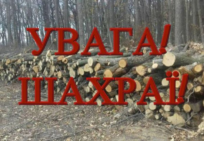 лісгосп, аферисти, реалізація дров