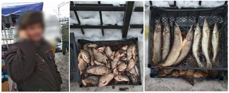 рибоохоронний патруль, риба, дозвіл, ринок, штраф