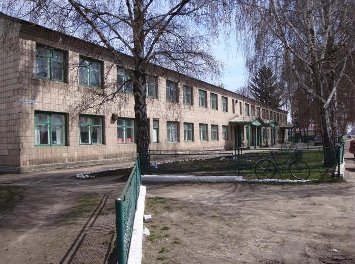 Бобровицька лікарня, перевірки, смерть пацієнтки