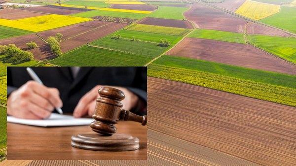 власність, земля, держава, прокуратура, суд