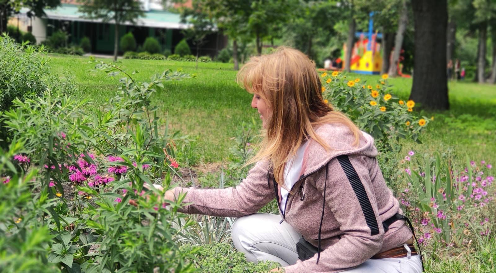 клумба, квіти, Графський парк, ніжинці