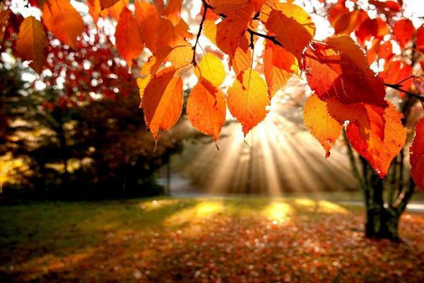 день осіннього рівнодення, Сонце