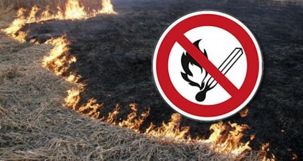 пожежа, підпал, сухої трави