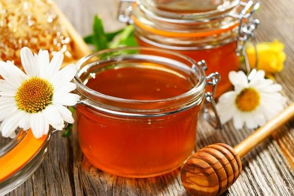 Ніжин, мед. бджолярі