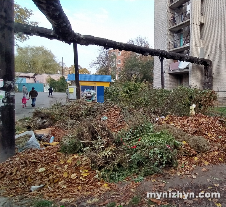 листя, непотріб, сміттєві майданчики, сміттєзвалища