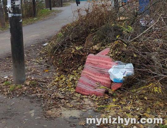 Ніжин, Березанська, сміттєзвалище