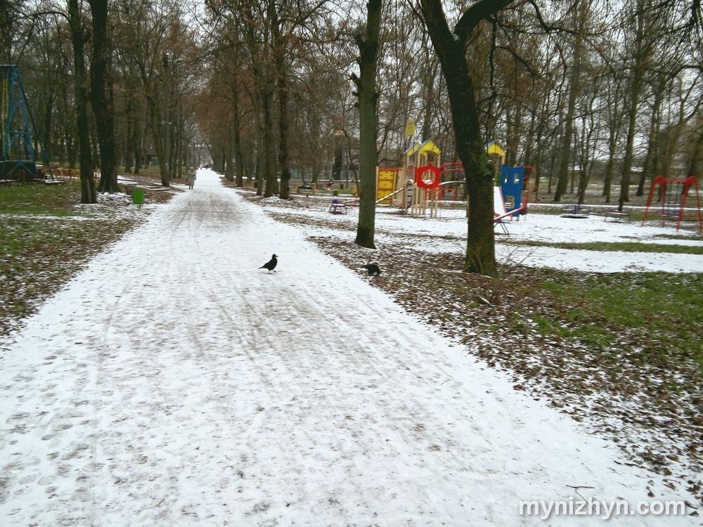 Сніг, фото, зима близько