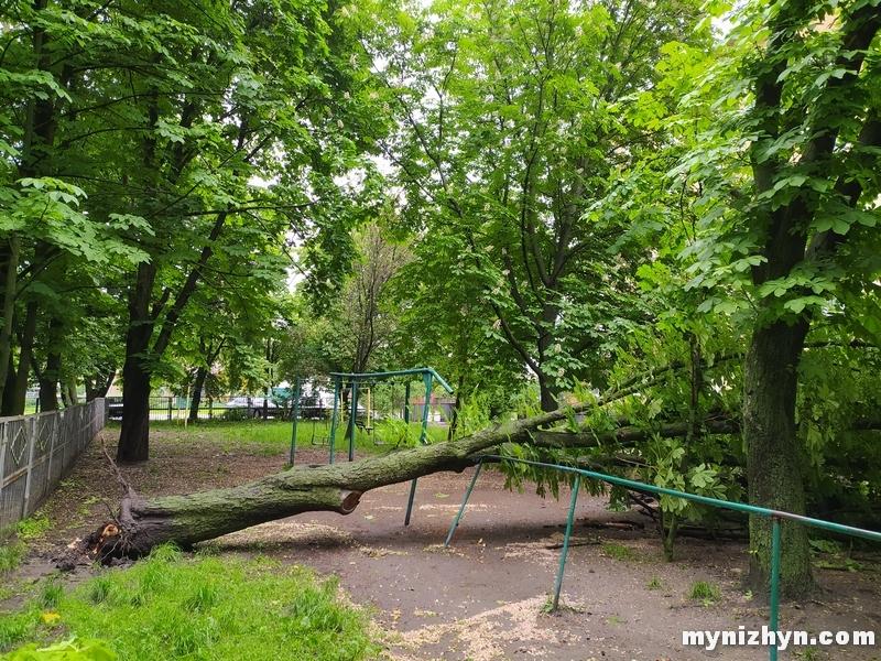 негода, дерева