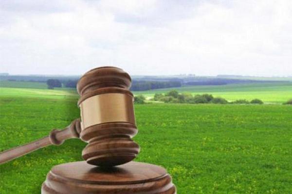 земельна ділянка, суд, небіжчик