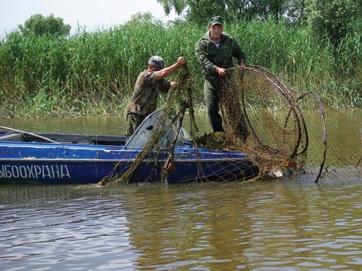 вентеря для рыбалки купить в ростове